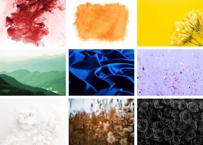 color palettes mood board